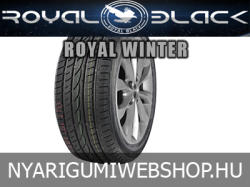 Royal Black Royal Winter 195/65 R15 91T
