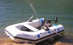 Kingfisher 270MS
