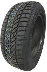 Diplomat Winter HP XL 205/60 R16 96H