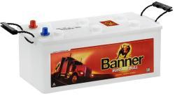 Banner Buffalo Bull 100Ah 600A