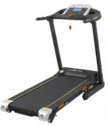 FitTronic DK-07auto