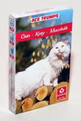 Cartamundi Macskás kártya