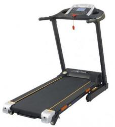 FitTronic D55