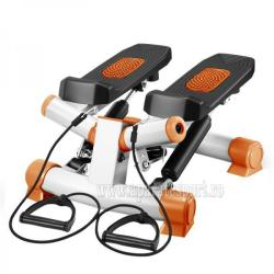 FitTronic S01