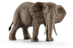 Schleich Afrikai Elefánttehén (14761)