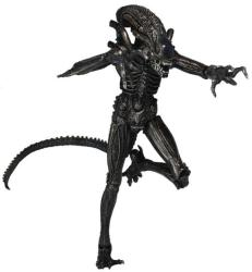 NECA Xenomorph Warrior