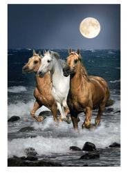 Clementoni Éjjeli vágta - Vágtázó lovak 1500 db-os (31676)