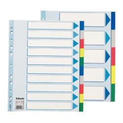 Regiszter, műanyag, A4 Maxi, 10 részes, ESSELTE (15267)