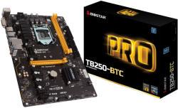 Biostar TB250-BTC