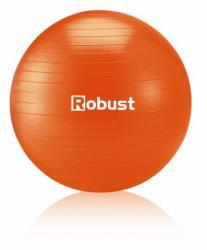 Robust  Fitnesz labda pumpával 85cm