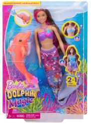 Mattel Barbie - Delfin Varázs - Isla barna hajú átváltozó hableány baba (lila) (FBD64)