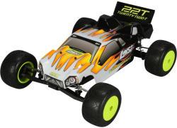LOSI 22T Race Truck 1:20