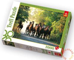 Trefl Angol telivér lovak 1000 db-os (10168)