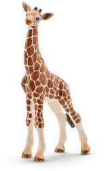 Schleich Girafa Pui (14751)