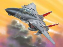 Revell F-14D Tomcat 1/100 (6623)
