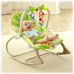 Fisher-Price Infant to Toddler 2in1