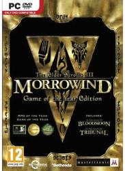 Bethesda The Elder Scrolls III Morrowind [Game of the Year Edition] (PC)