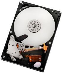 """Hitachi Ultrastar A7K2000 3.5"""" 500GB 7200rpm 32MB HUA722050CLA330 0F13700"""