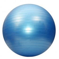 Dayu Fitness Minge de aerobic pentru sala 55cm DY-GB-070-55