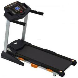 FitTronic FT4602