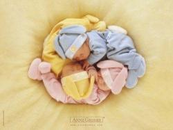 Educa Egy fészekalja alvó baba - Anne Geddes sorozat 500 db-os (13804)