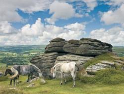 Ravensburger A Dartmoor Nemzeti Park lovai 2000 db-os (91663)