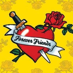 Ravensburger Barátság, szív 500 db-os (91519)