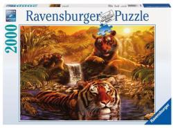 Ravensburger Tigrisek a vizesároknál 2000 db-os (16646)