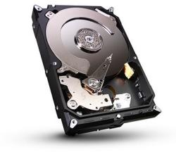 Seagate Barracuda 1TB 16MB 7200rpm ST31000524AS