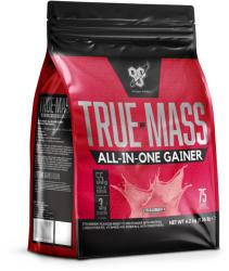 BSN True Mass All In One Gainer - 4200g
