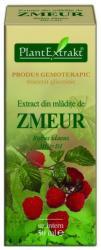 PlantExtrakt Extract din Mladite de Zmeur, 50 ml, Plant Extrakt