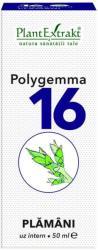 PlantExtrakt Polygemma 16 Plamani, 50 ml, Plant Extrakt