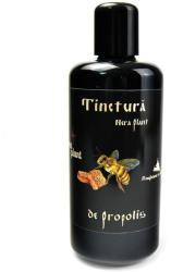Nera Plant Tinctura de Propolis, 200ml, Nera Plant