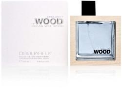 Dsquared2 He Wood Ocean Wet Wood EDT 100ml