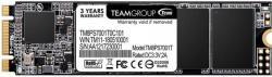 Team Group MS30 256GB M. 2 SATA3 (TM8PS7256G0C101)