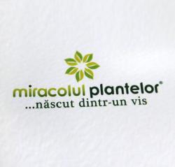 Miracolul Plantelor Homegast 30 capsule Miracolul Plantelor 1+1 GRATIS OFERTA