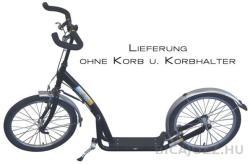 Bike2go Travel Star