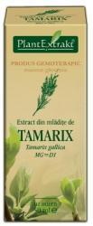 PlantExtrakt Extract din mlădiţe de CĂTINĂ ROŞIE, 50 ml, Plant Extrakt