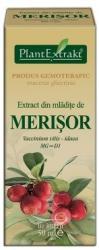 PlantExtrakt Extract din mlădiţe de MERIŞOR, 50 ml, Plant Extrakt