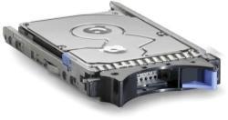 IBM Express 300GB 10000rpm SAS 42D0637