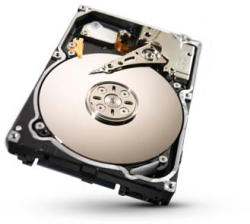 Seagate Constellation 2 1TB 64MB 7200rpm ST91000640SS