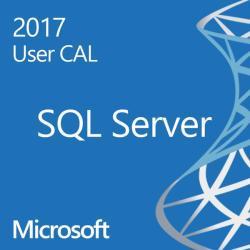 Microsoft SQL Server Standard Edition 2017 359-06557