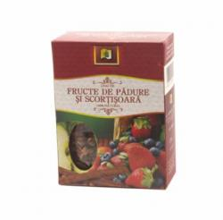STEFMAR Ceai fructe de padure scortisoara 75gr
