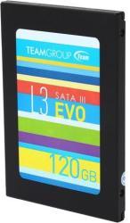 Team Group EVO 120GB T253LE120GTC01