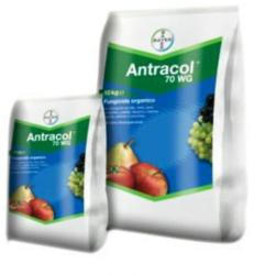 Bayer Fungicid Antracol 70 WP