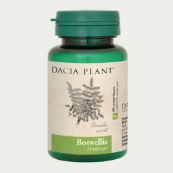 DACIA PLANT Boswellia - 60 comprimate