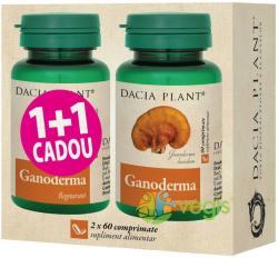 DACIA PLANT Ganoderma - 60 comprimate