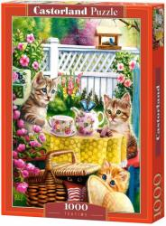 Castorland Teatime - 1000 piese (103812)