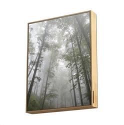Energy Sistem Forest