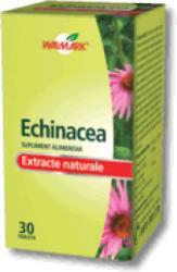 Walmark Echinacea - 30 comprimate